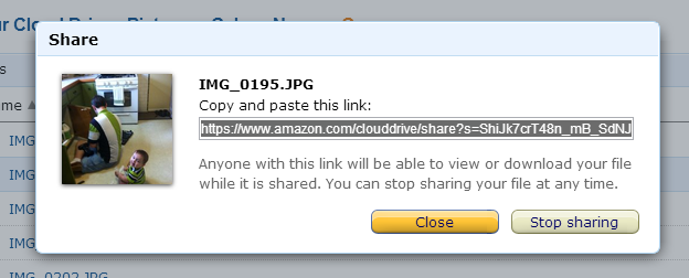 The Cloud Drive share dialog