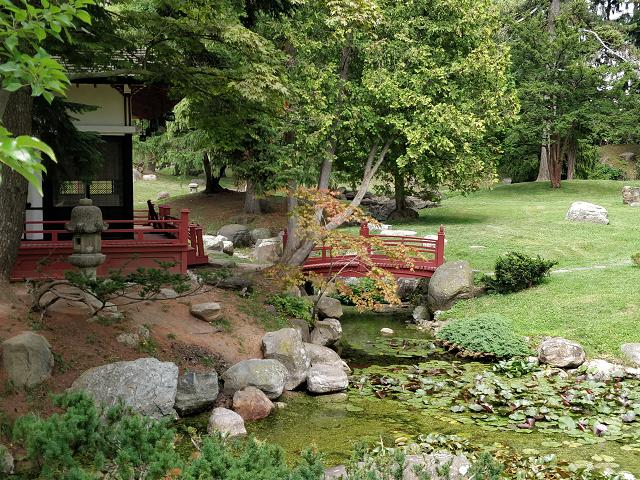 The Japanese garden and tea house